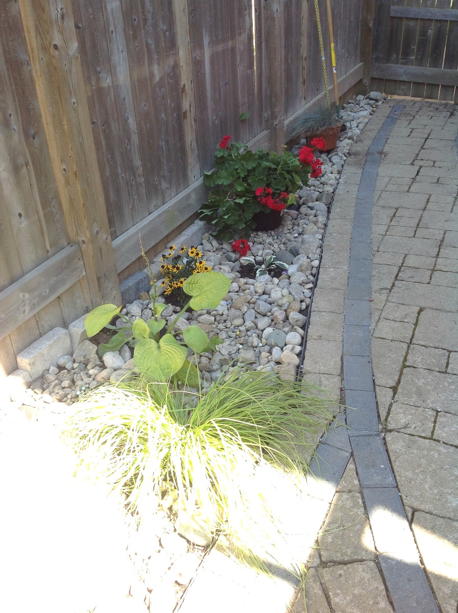 Rock garden, walkway garden, border garden, fence garden
