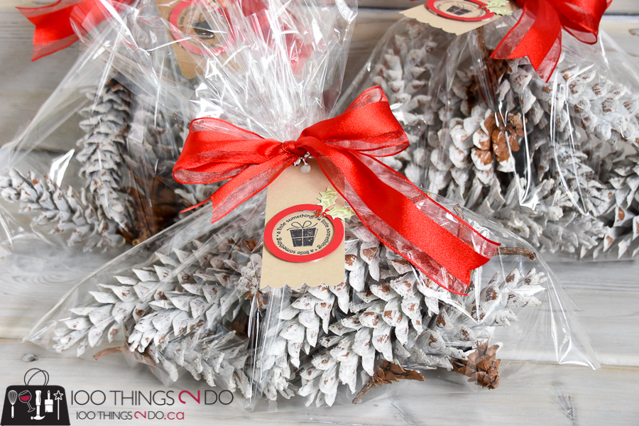 Dipped pinecones, white pinecones, preparing pinecones for display, Christmas pinecones, pinecone gifts
