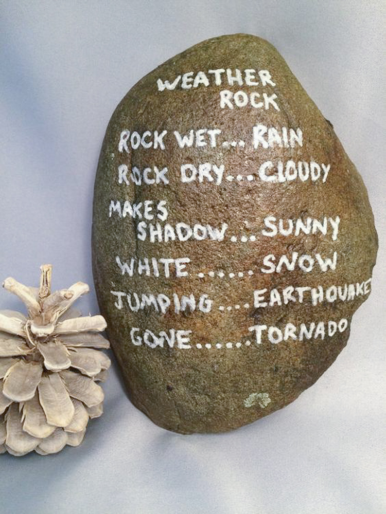 Gag Gift ideas, white elephant gift, gag Christmas gifts, funny gift ideas, weather rock