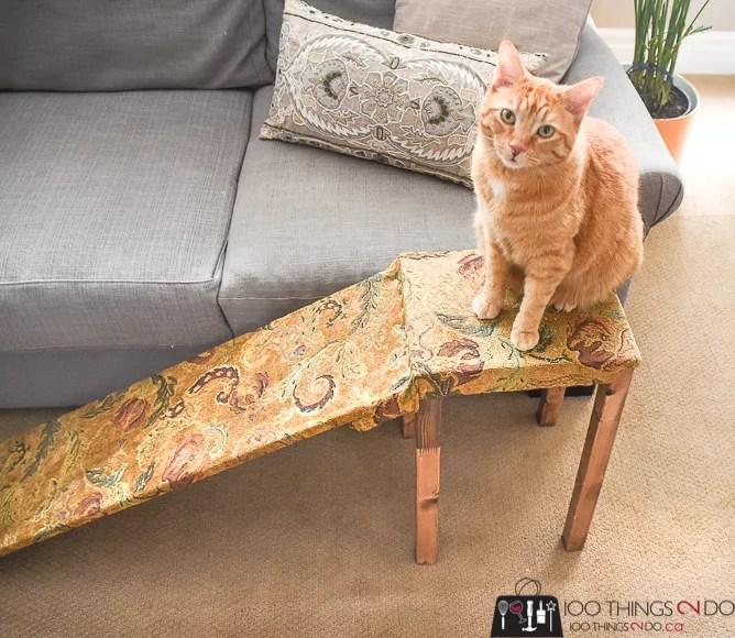 DIY pet ramp, pet ramp, cat ramp, dog ramp, aging pets