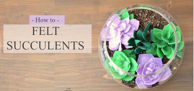 Felt succulent, felt succulents, felt flowers