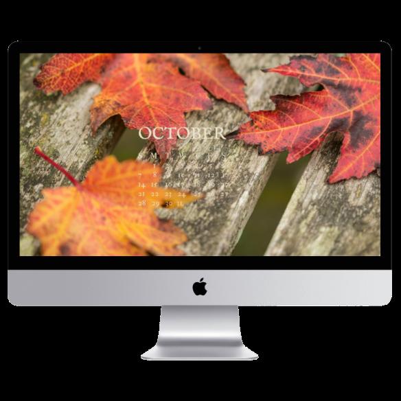 Fall Desktop Wallpapers Free Screensavers