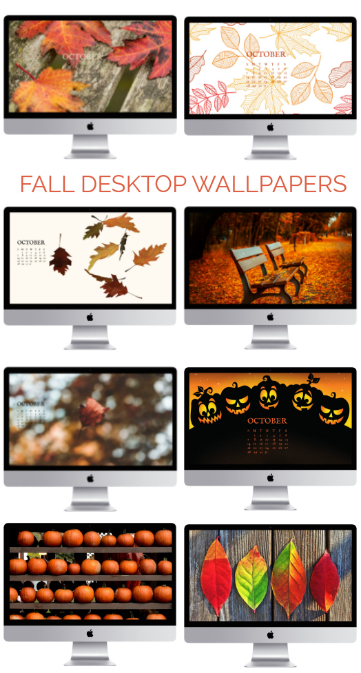 Fall desktop wallpapers, free Fall wallpapers, free Fall screensavers