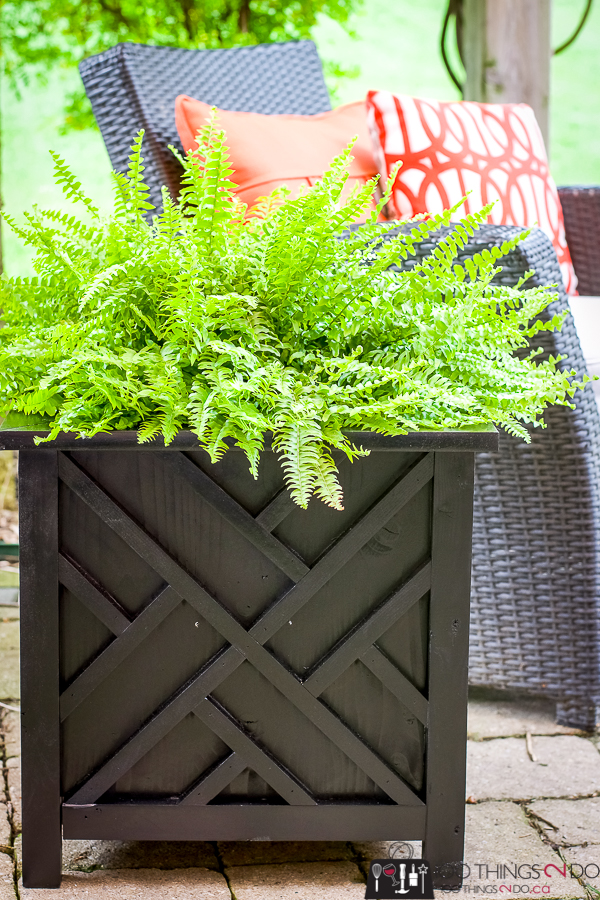 DIY planter, chippendale planter, DIY garden planter, DIY garden box