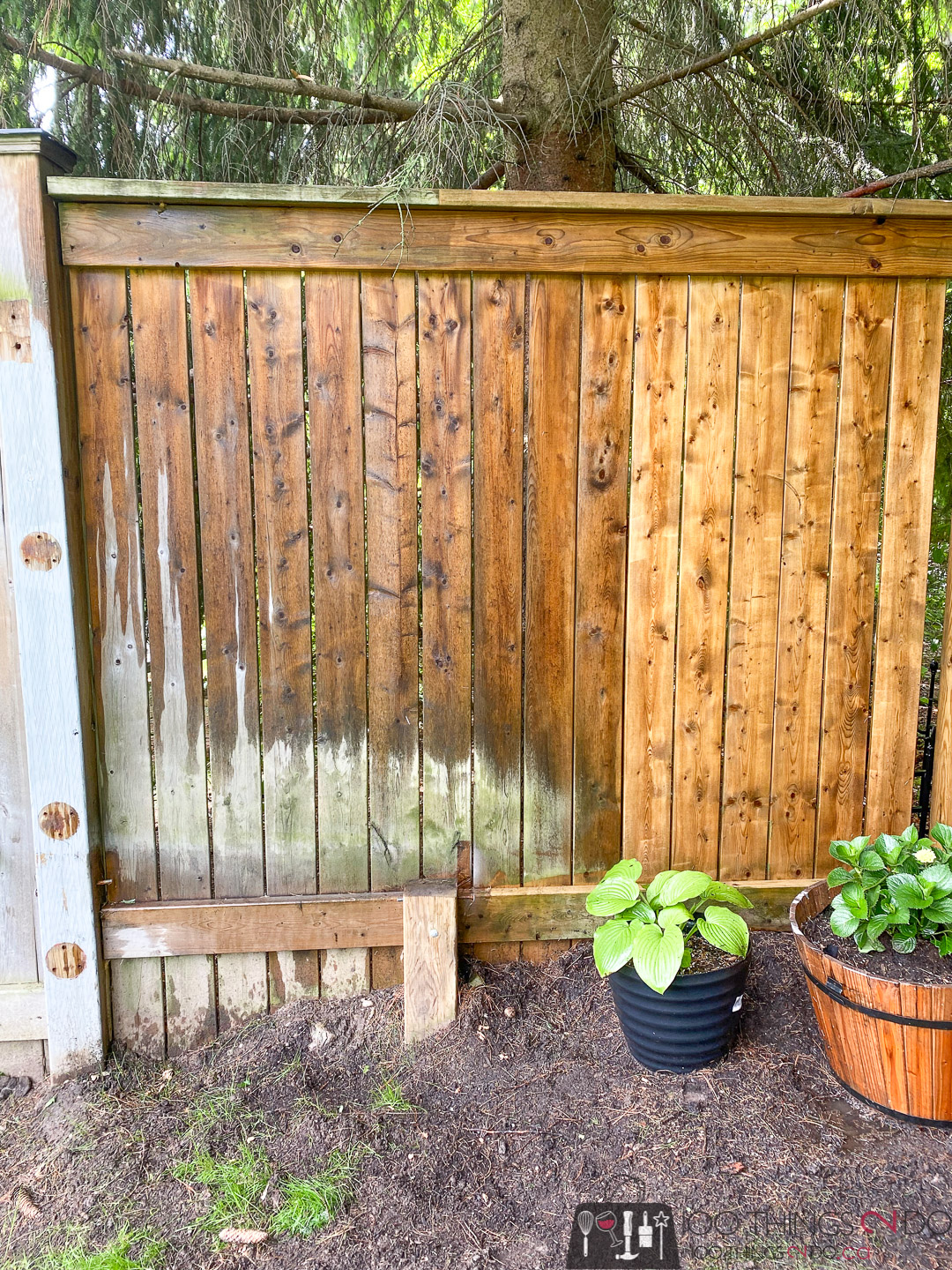 pressure washing your fence