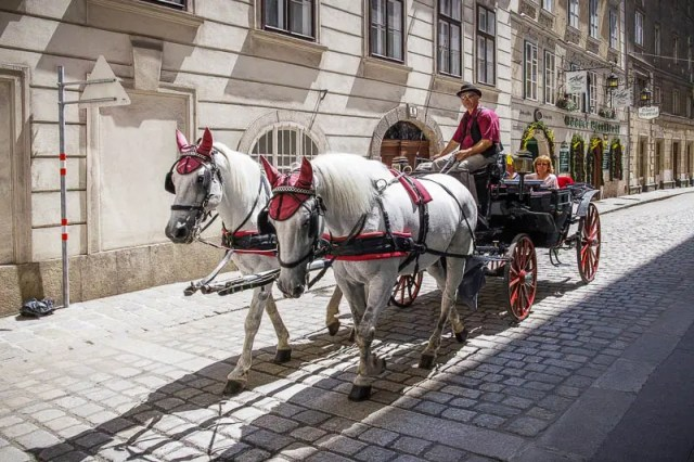 Through Vienna in a horse-drawn carriage