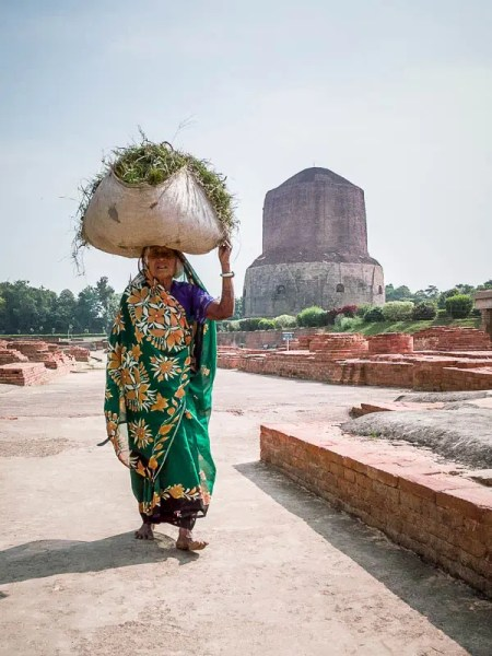 Older woman in Lumbini carrying a bag with plants on the head