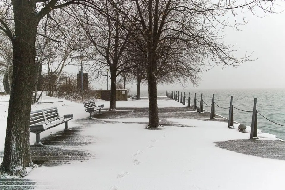 Toronto Harbourfront winter