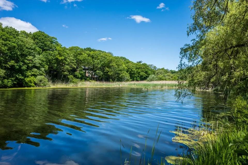 Grenadier Pond - High Park Toronto
