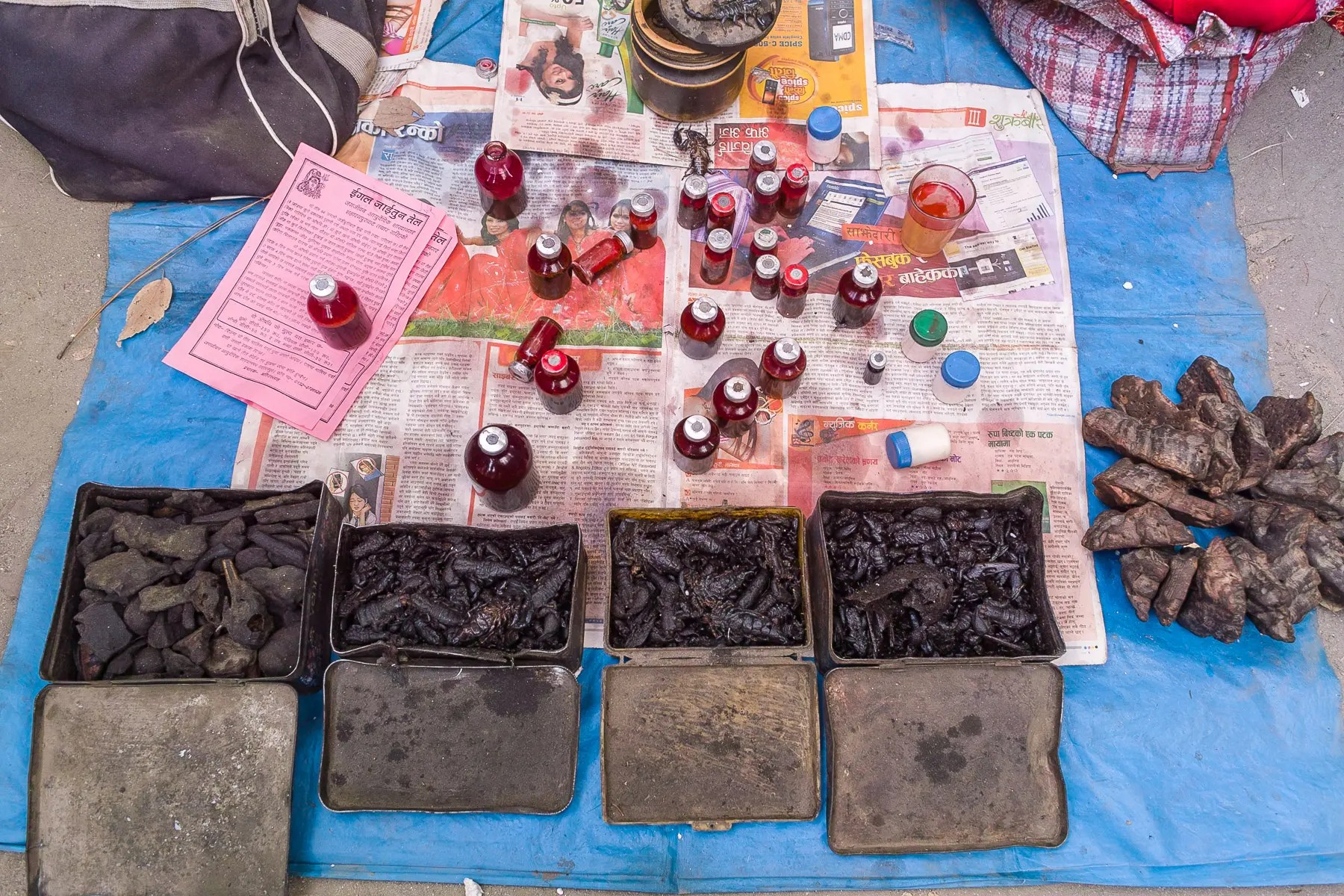 Kathmandu scorpion medicine