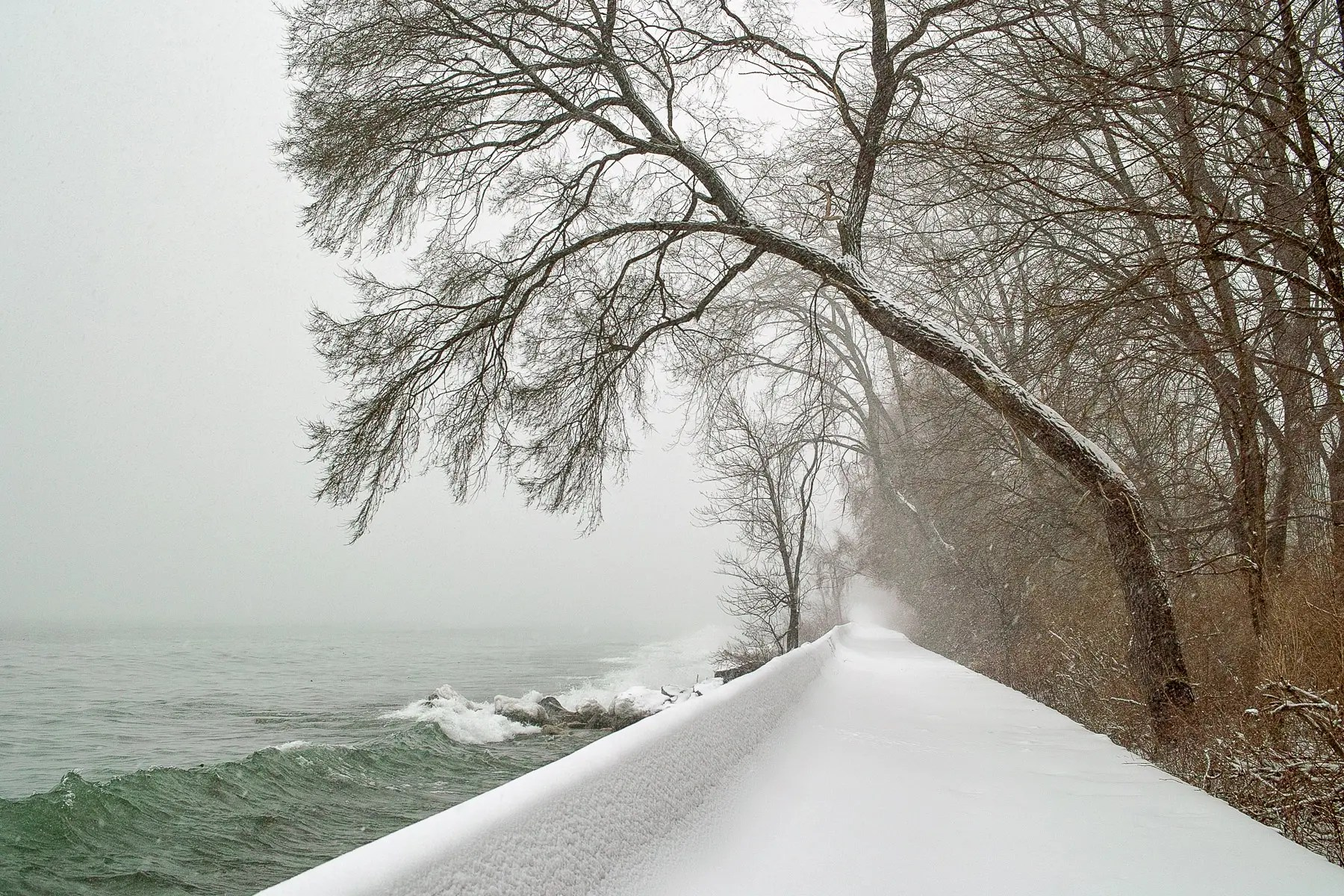 Toronto Islands Winter