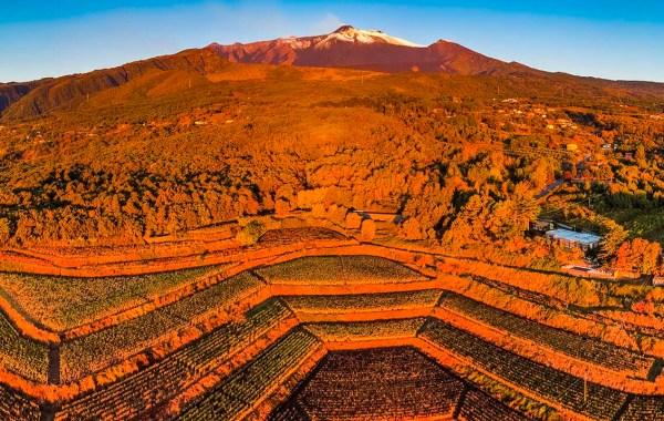 Terrazzamenti sull'Etna