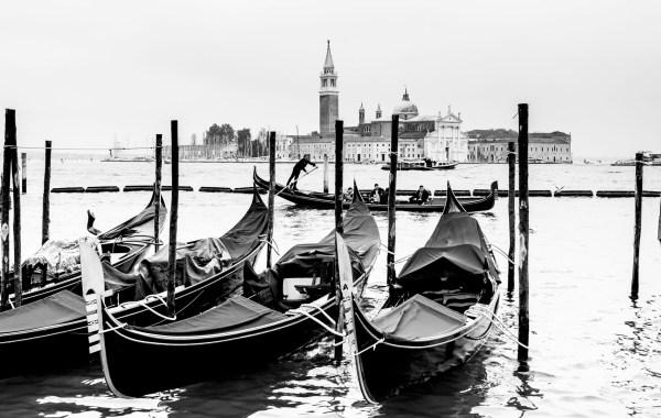 venezia bartuccio