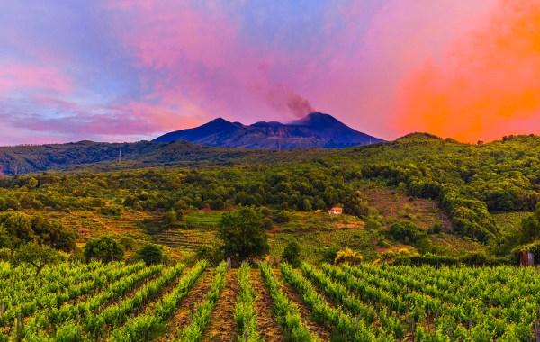 Etna, i vigneti di Monte Gorna