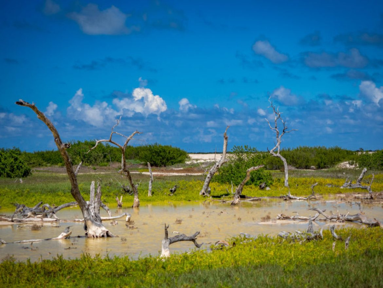 Półwysep Jukatan