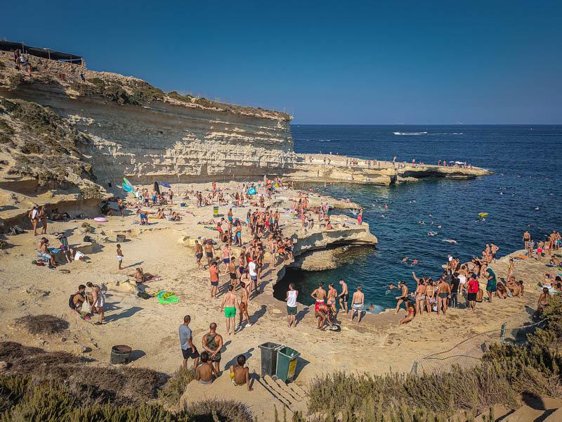 Malta ziedzanie
