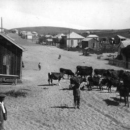 1280px-Bnei_Brak._1924-1939_(id.15222502)