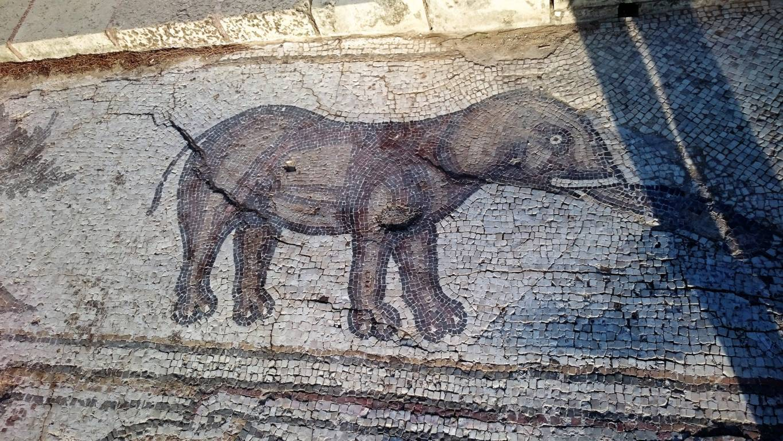 Caesarea040617mqc (2)