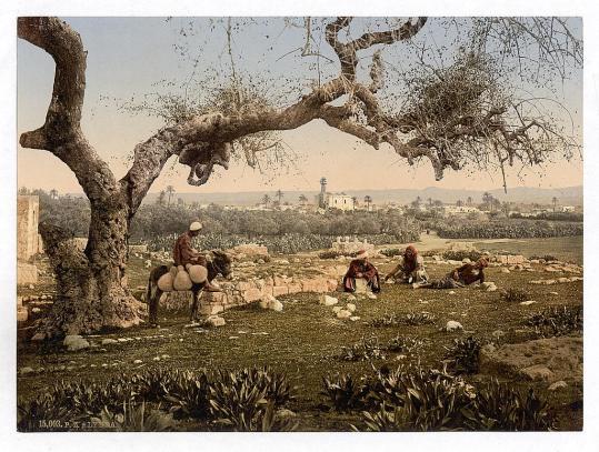 Lydda_between_1890_and_1900
