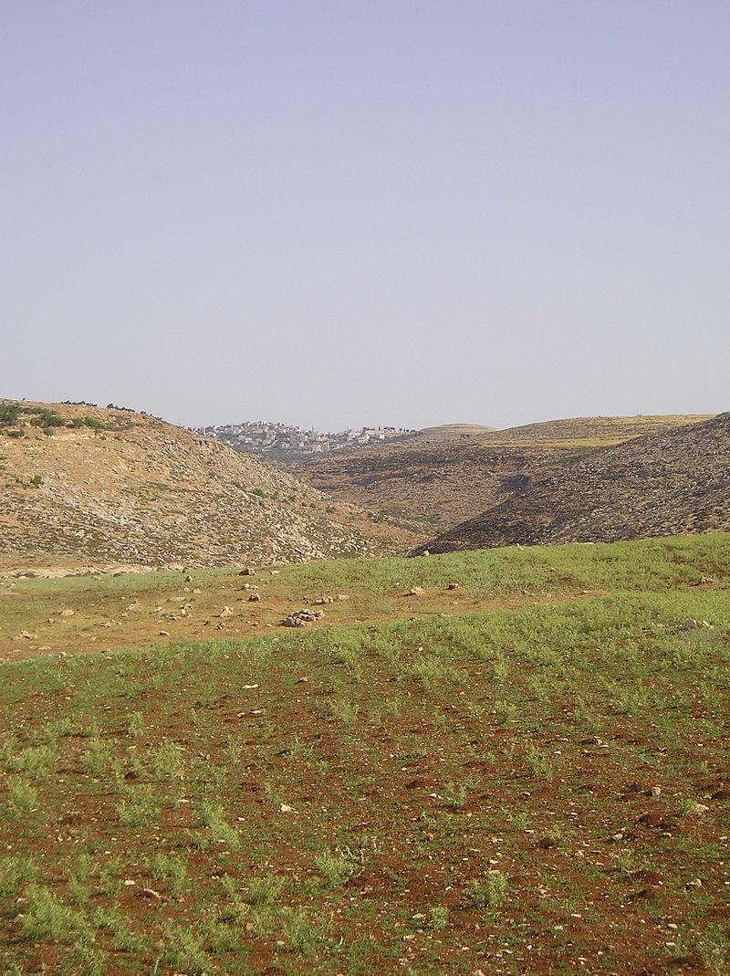 Taybeh_01