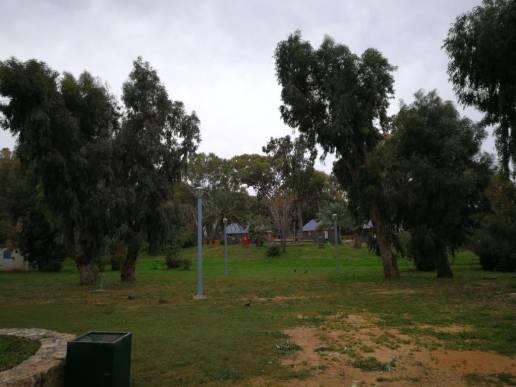 20180315AkhzivNature Reserve m (7)