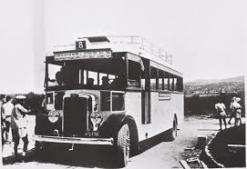 Egged Bus 3