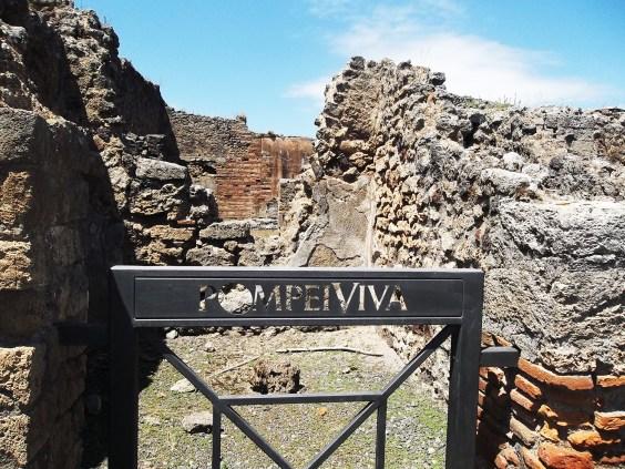 pompeya viva