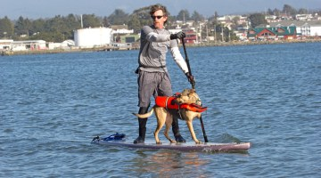 #47 – Kayaking or Paddleboarding on Humboldt Bay