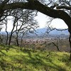 Spend the Day at  Foothill Regional Park