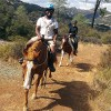 Take a Guided Horseback Ride Above Lake Sonoma