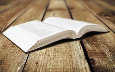 Biblical Counseling: The Reformed (Covenant) Approach vs. The Dispensational Approach (Part Four)