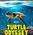 Streaming Turtle Odyssey 2018 Sub Indo