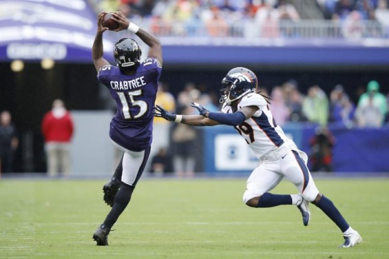 Image result for michael crabtree ravens