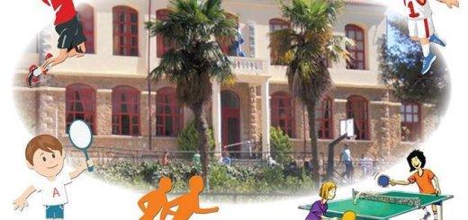 Αθλητικό πανόραμα από το 1ο Δημ. Σχολείο Νεάπολης