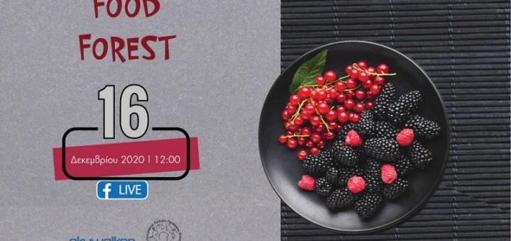 """Τα """"Food Forest"""" στο facebook, 16/12/2020"""