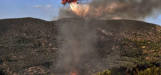 81 δασικές πυρκαγιές το 24ωρο ! Αυτοκτονία !!!!