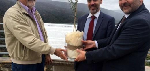 οι δήμαρχοι Αγίου Νικολάου, οροπεδίου Λασιθίου και ο Γ,Γ, απόδημου Ελληνισμού (κέντρο) με τη κόρη της αρχαίας ελιά του Καβουσίου