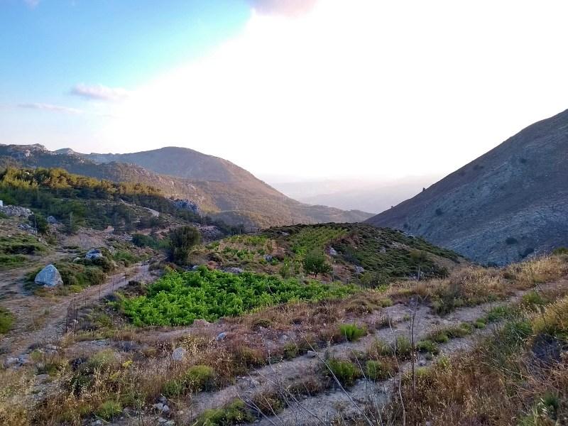 Ανοικτή Επιστολή προς τους πολίτες της Κρήτης για τους δασικούς χάρτες