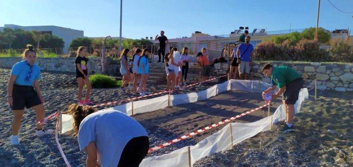 Προστασία Φωλιών Χελώνας Καρέτα - Καρέτα στις παραλίες της Ιεράπετρας