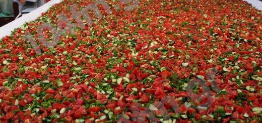 Ιεράπετρα, η μεγαλύτερη σαλάτα στο κόσμο, ρεκόρ Guinness