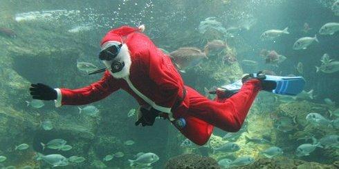Santa_Claus_diver