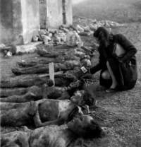 νεκροί πολέμου