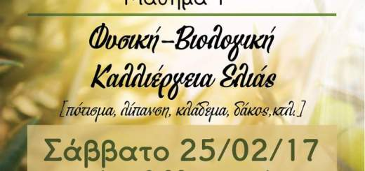 Σχολείον Βιολογικής Γεωργίας, φυσική βιολογική καλλιέργεια ελιάς