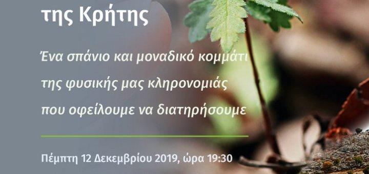 Αμπελιτσιά: το απειλούμενο, ενδημικό δένδρο της Κρήτης