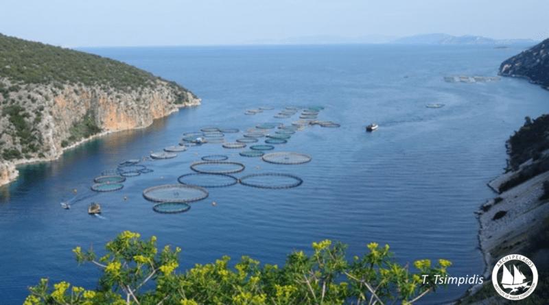 Το Αρχιπέλαγος στη συνάντηση για την Ιχθυοκαλλιέργεια