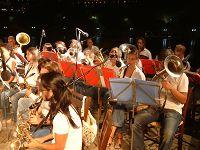 Οι μουσικοί