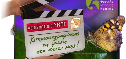 κινηματογραφώντας τη φύση στο σπίτι μας