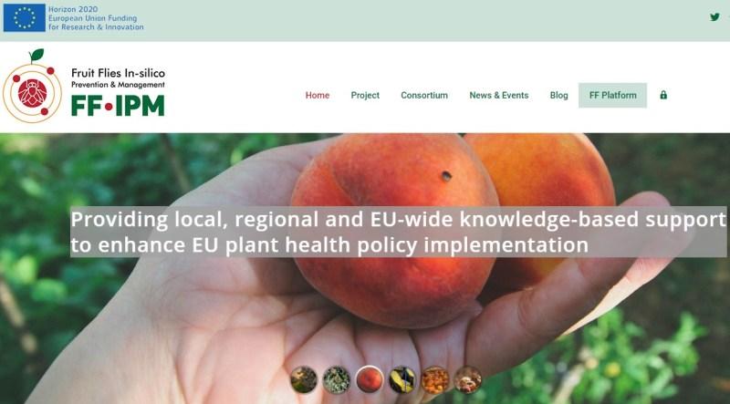 Η μύγα των φρούτων στο στόχαστρο των επιστημόνων για υγιείς ευρωπαϊκές καλλιέργειες