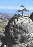 Τοπίο από την περιοχή της Καλαμαύκας