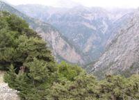 Σαμαριά